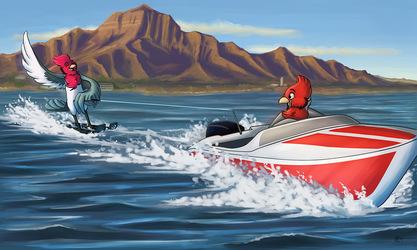 Water Skii