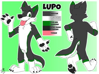 Reference Sheet Commission - Lupo Wuff