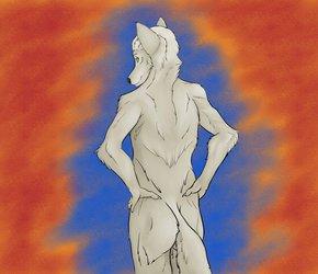 wolf back expercise