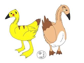 Pikagoose and Raigoose