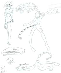 Kat Character Study