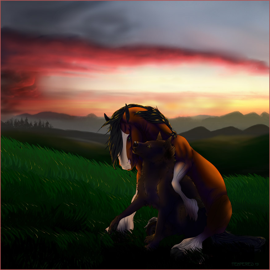 Featured image: Sunset