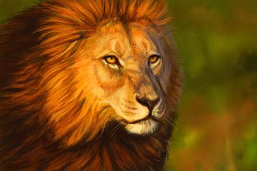 Lion Speedpaint
