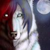 avatar of TwilitTiger
