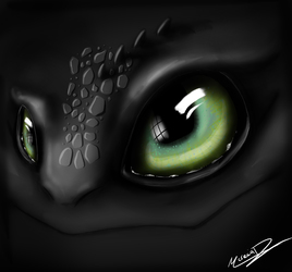 Toothless eyes <3