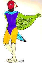 (T) Lady Gouldian Finch Character Design
