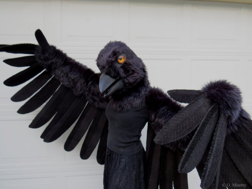 Most recent image: Crow Fursuit Partial