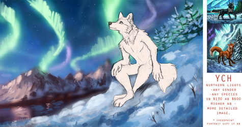 YCH Northern Lights