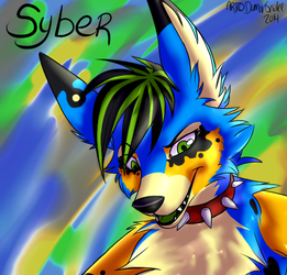 Syber Gift