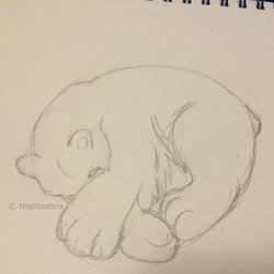 Traditional Bear Sketch (5 Minutes)