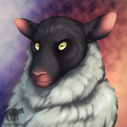 Silver Sheep Head Shot by Silvixen