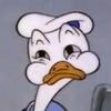 avatar of SkellyBrains