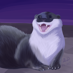 Somewhat Realistic: Happy Otter