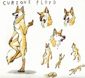 Sketchy Floyd Ref
