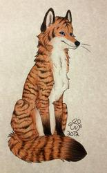 Tiger striped foxxie! - Art by RainbowFoxy