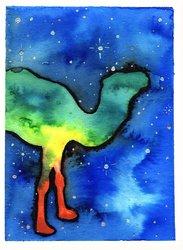 Galaxy Camel