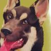 avatar of kakequinn