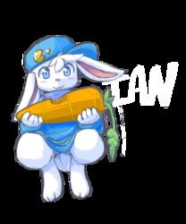 Ian the Bunny