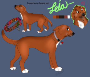 Reference Sheet [Leia]