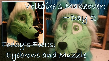 Voltaire's Makeover: Day 2