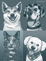 Pet Doodles #1