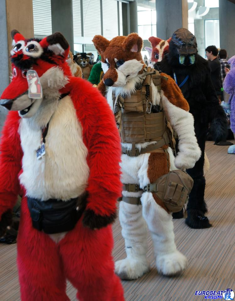 Most recent image: Parade of Critters (FC2013)