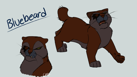 Bluebeard Sketches