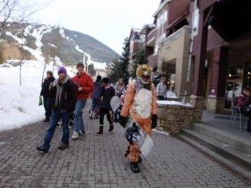 Tiger at Whistler