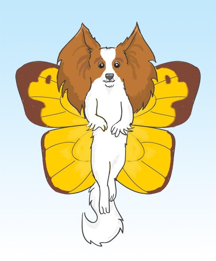 Most recent image: Papillon