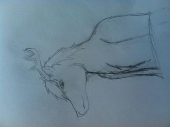 Random deer drawing