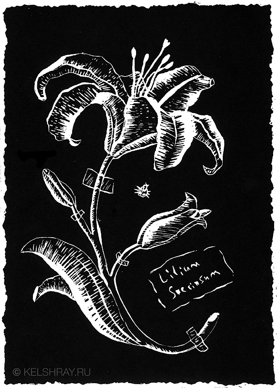 Linocut - Lily