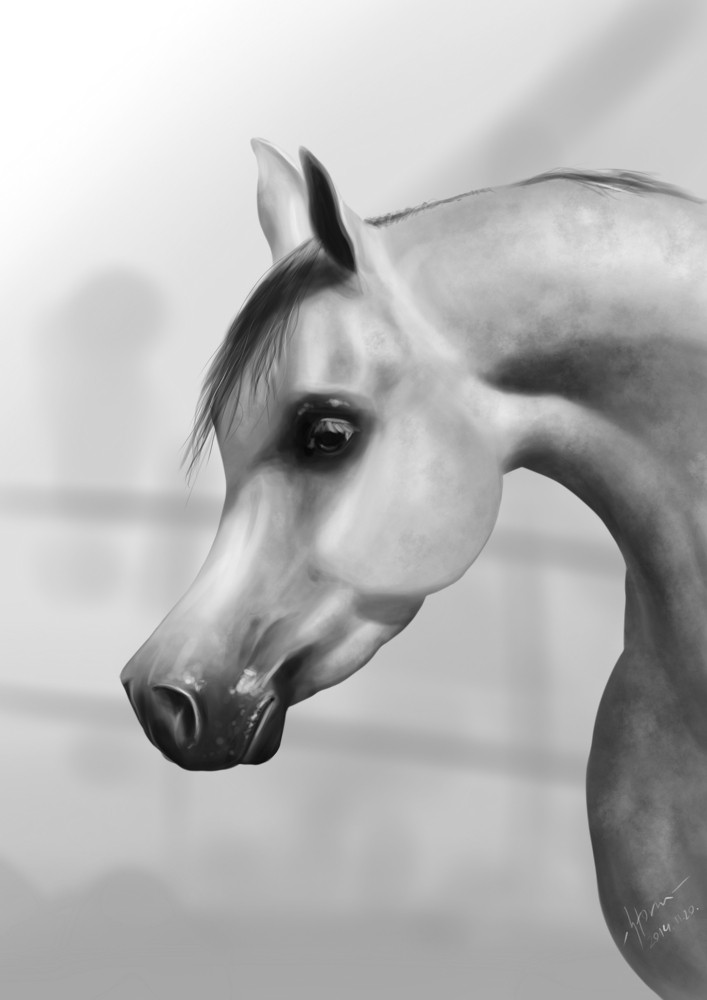 Featured image: Arabian
