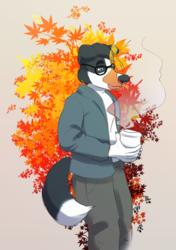 dach autumn leaves