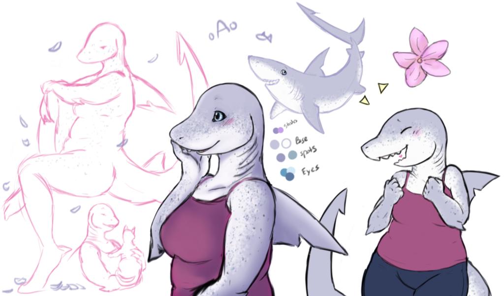 Soubi the spotted White Shark