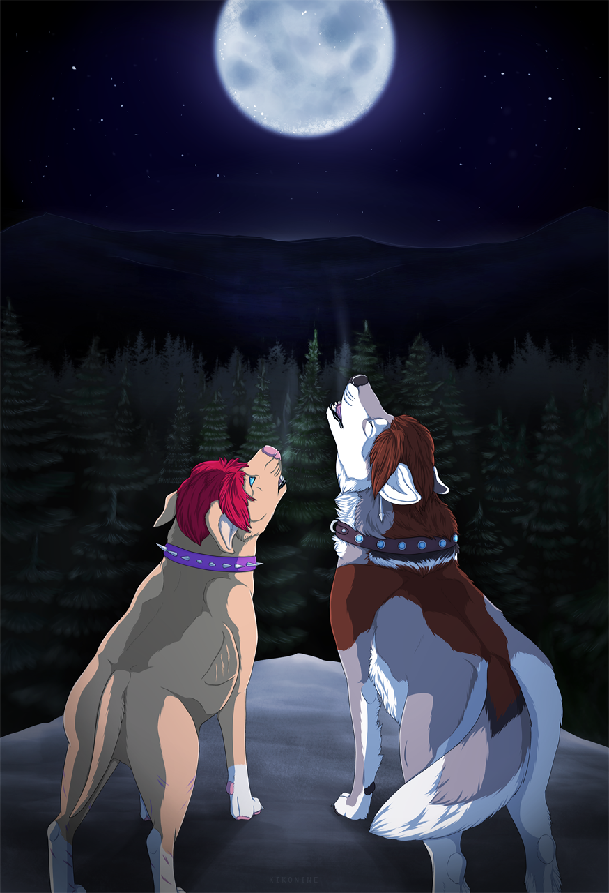 Howling into the night
