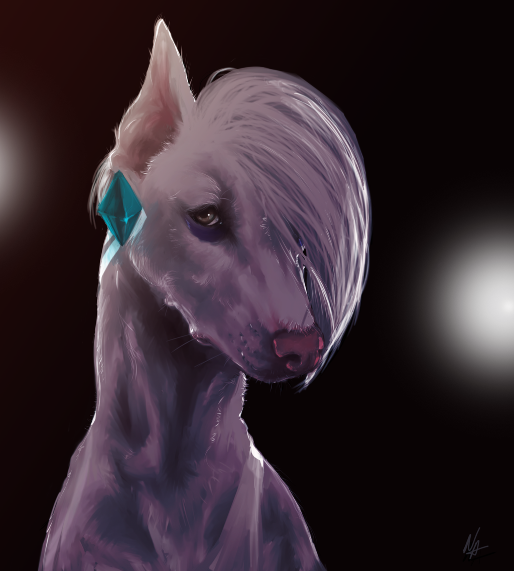 Most recent image: Demon Dog Ghirahound
