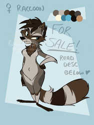 Raccoon Character [FOR SALE/AUCTION]