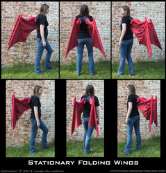 Stationary Dragon Wings