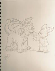 Tiny Yuuryuu Marci McAdam Sketchbook 1