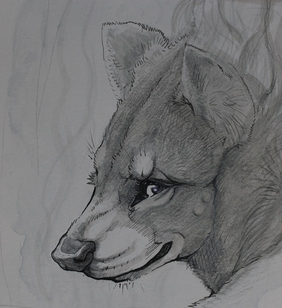 Asha Hyena