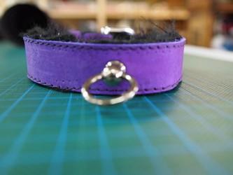 [com]] bondage collar