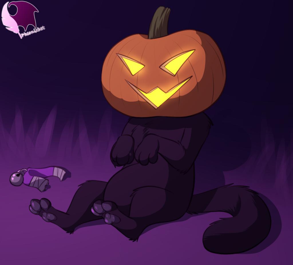 Most recent image: Pumpkin Oop