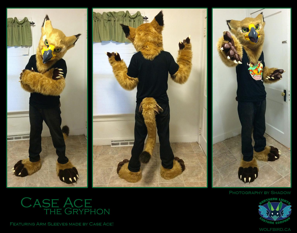 Case Ace Gryphon!