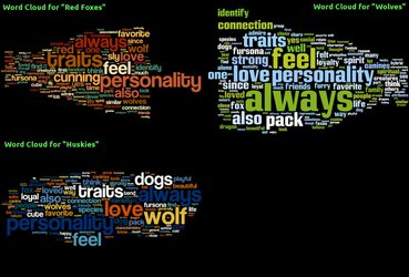 Word Cloud - Why are you a wolf/fox/husky?