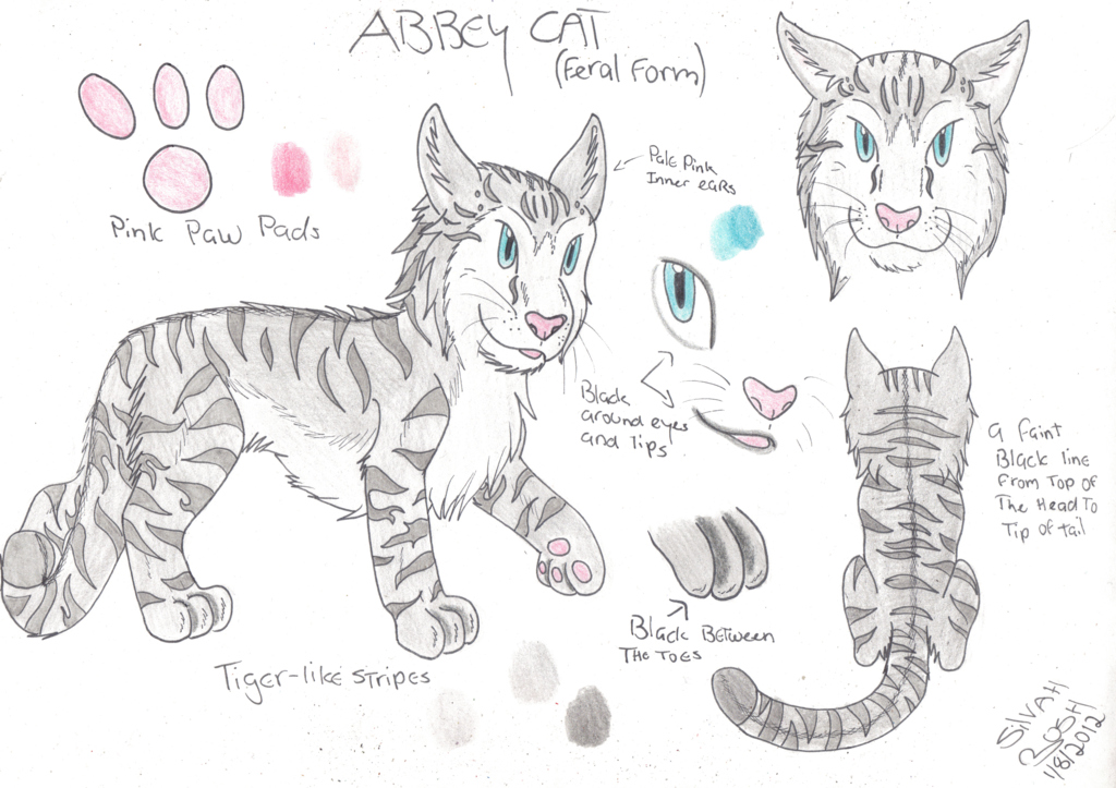 Request: Abbey Cat Feral Ref