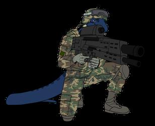 Land Warrior