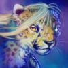 avatar of Drias