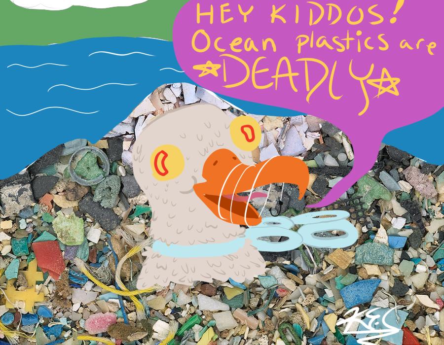 Ocean Plastics Project