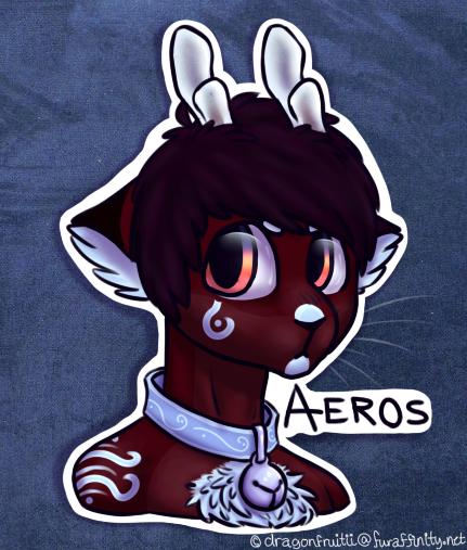 aeros badge