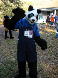 Pander Panda